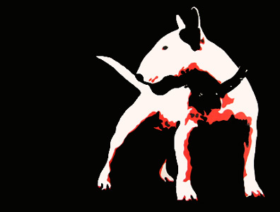Boss Bull Terriers white red black